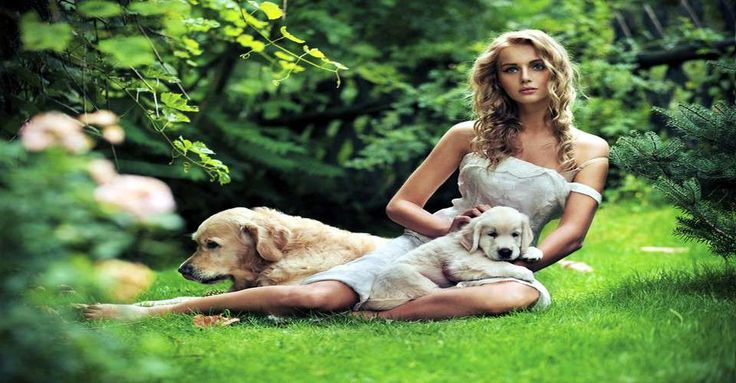Designer dog collars: Design Dogs, Dogs Gone It, Dogs Goneit, Dogs Collars, Dogs Shops, Women Dogs, Dogs Barefoot, Madi Mahtal, Models With Dogs