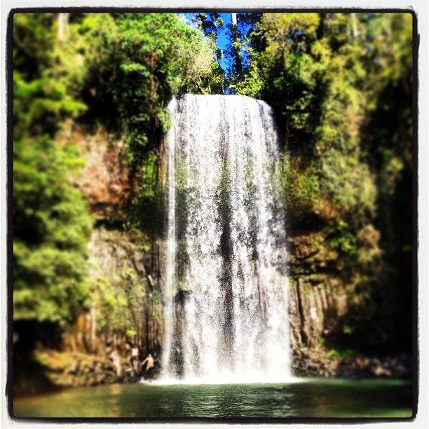 Millaa Millaa Falls in Queensland