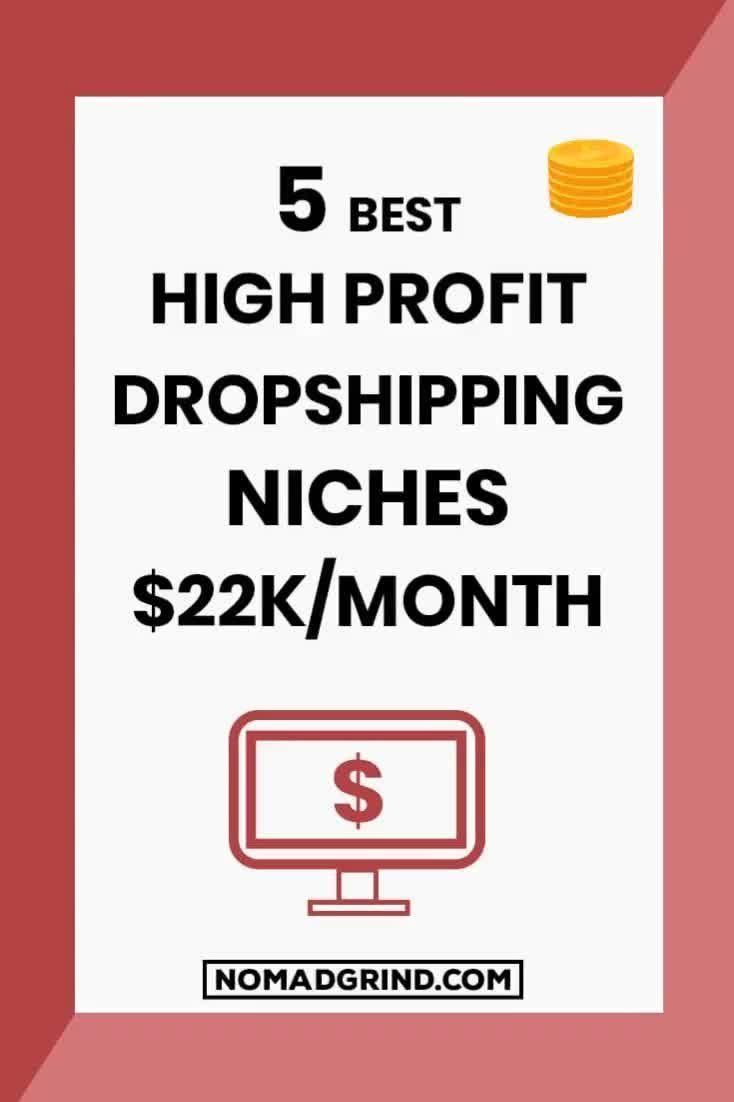 5 Best Shopify Dropshipping Niches For 2019 Nomad Grind Video Video Woocommerce Themes Ecommerce Traffic Drop Shipping Business