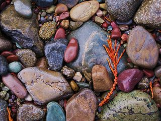 River rocks | por CNorth2