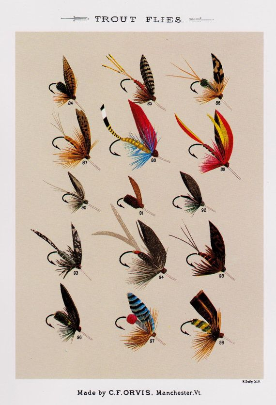 Fly fishing print trout flies print fishing print beach for Fly fishing decor