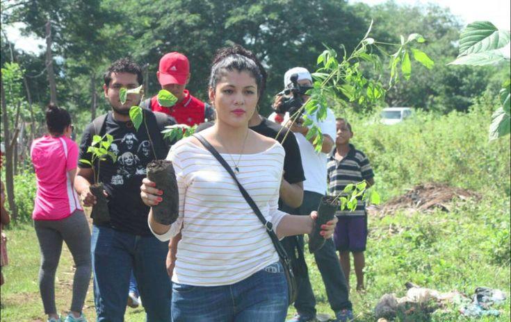 Un grupo de voluntarios participa en una campaña de reforestación en el municipio de Tisma, departamento de Masaya (Nicaragua).  La difícil apuesta de Nicaragua por rescatar sus bosques El país centroamericano ha perdido más de un millón de hectáreas en los últimos cinco años