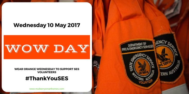 Today we say #thankyouSES for the fantastic job you do protecting the community. We are proud of you ! #wowday #wearorangewednesday