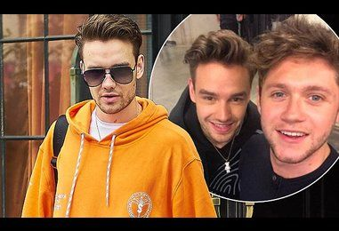 Liam Payne enjoys One Direction reunion with Niall Horan