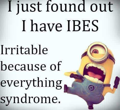 17 Best Images About Adventures With Ibs On Pinterest