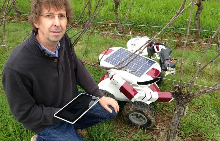 Robots in the vineyards? French inventor hopes so