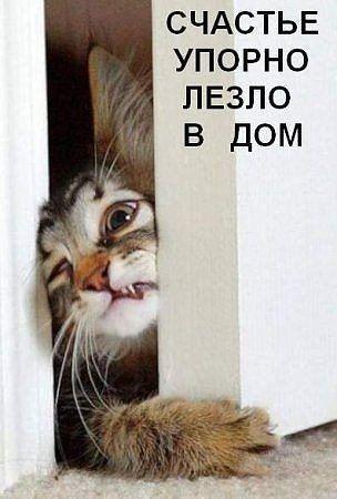 Гнездышко l Домашний уют, декор, дизайн | ВКонтакте