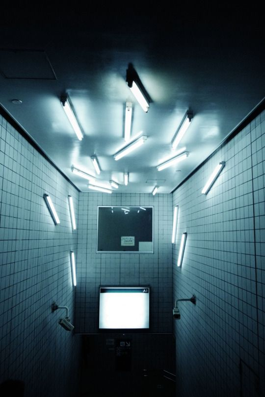 1221 best lighting      light installations images on pinterest
