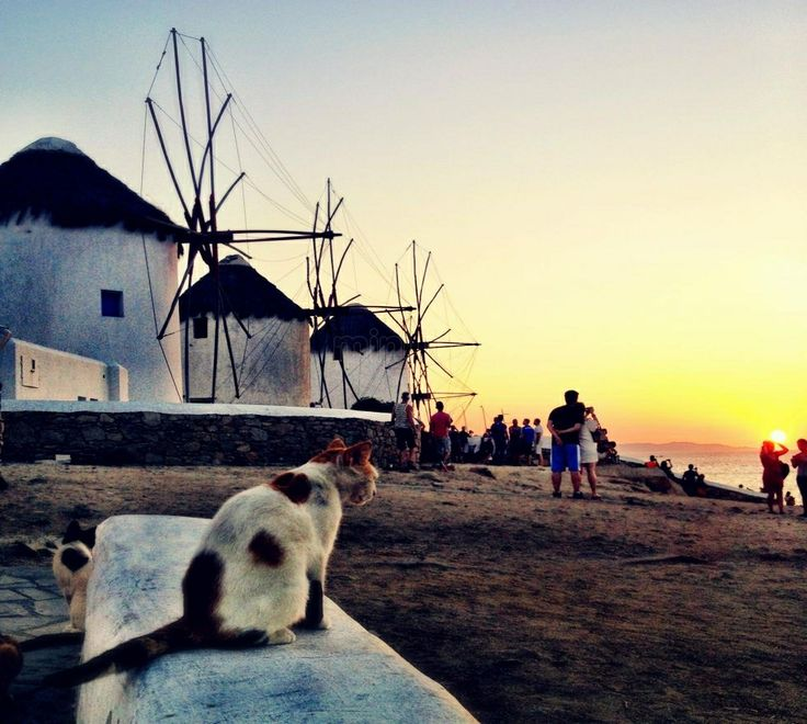 I voted Greece as the world's most social destination in the #SDawards
