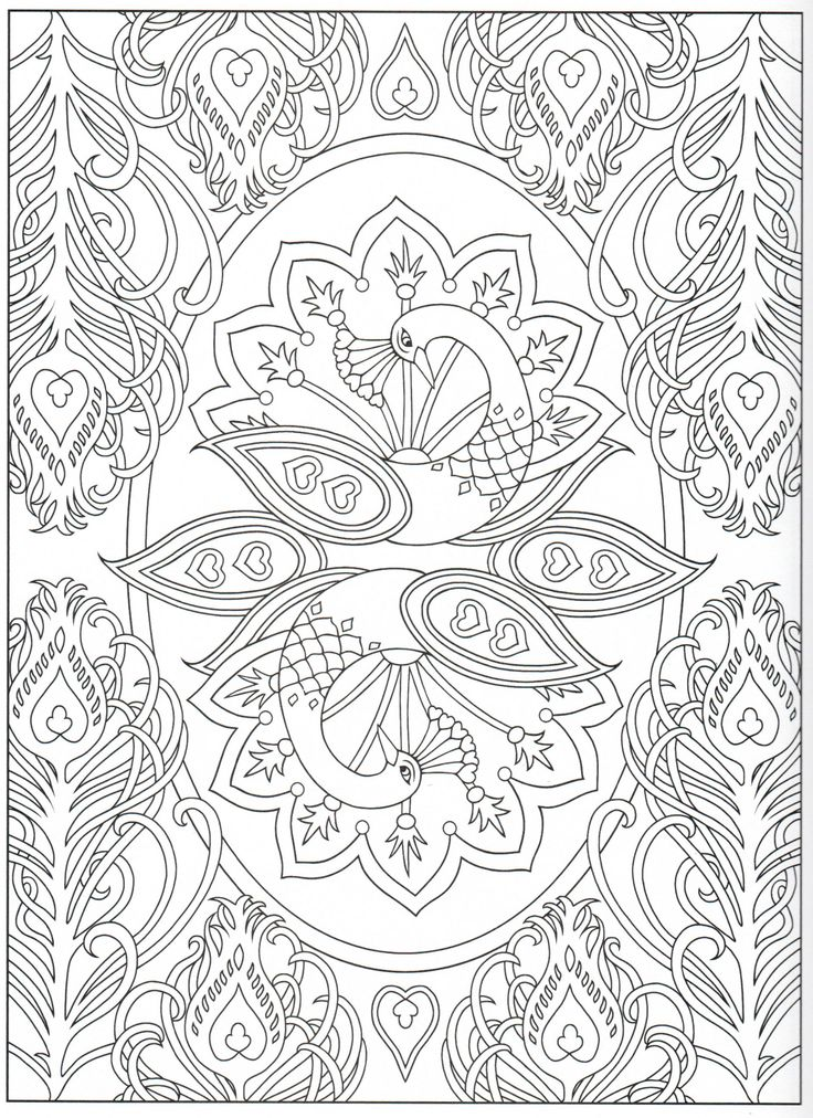 Peacock coloring page 1731 Color