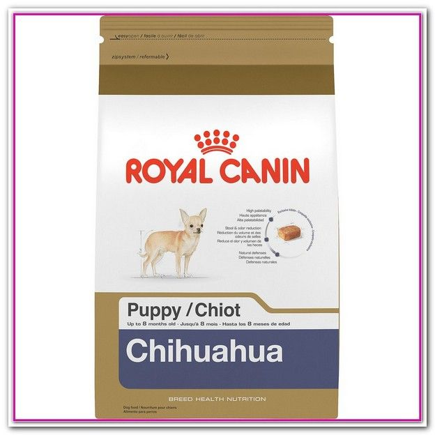 Best Dog Food For Chihuahua 2018 Are You Wondering What The Best