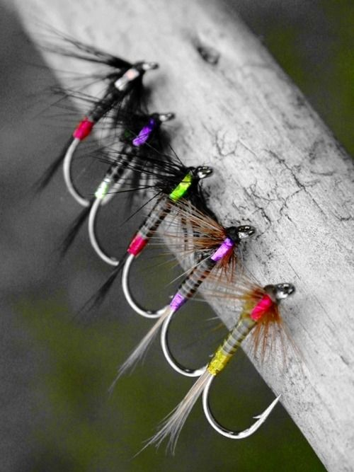 What are fly hooks?