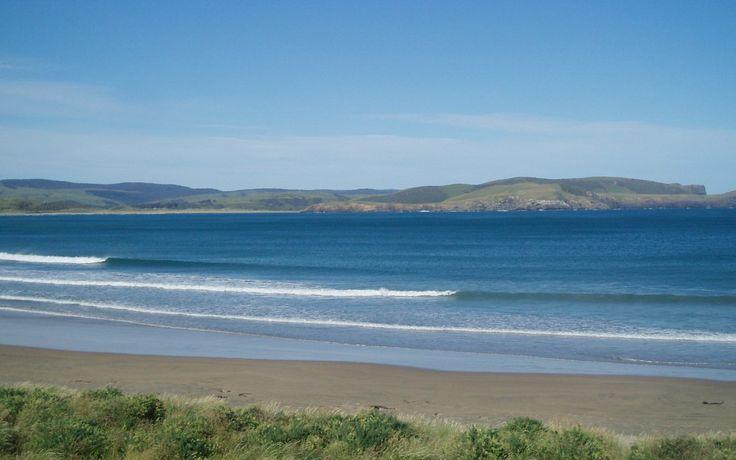 NZ Background