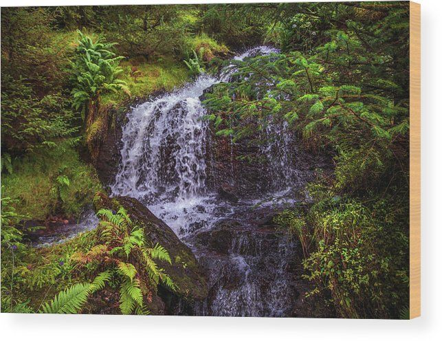 Natural Meditation. Rest And Be Thankful. Scotland Wood Print by Jenny Rainbow.  All wood prints are professionally printed, packaged, and shipped within 3 - 4 business days and delivered ready-to-hang on your wall. Choose from multiple sizes and mounting options.