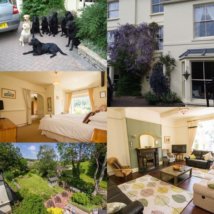 We're delighted that Portland House have renewed their listing with us. This wonderful dog friendly accommodation sleeps up to 20 people and enjoys an idyllic village setting in the Forest of Dean.  #forestofdean #herefordshire #dogfriendly