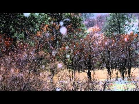 'Carol of the Bells' instrumental (piano, guitar, cello, bass trumpet) snow/christmas sequence