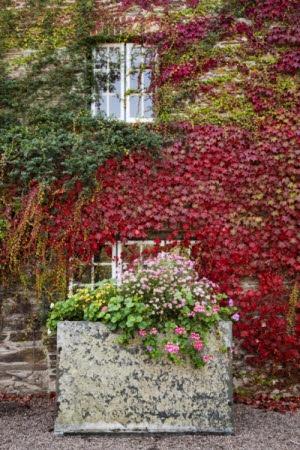 Trelissick Garden, Cornwall