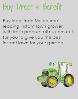 Buy local from Melbourne's leading instant lawn grower, with fresh product all custom cut for you to give you the best instant lawn for your garden.