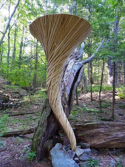 Mark Bennett: Wood