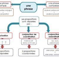 Carte mentale : les phrases complexes et les propositions