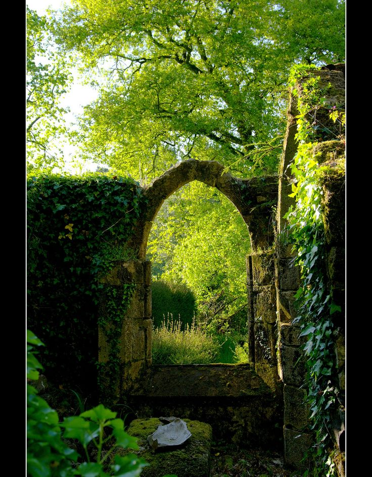 . . . : Secret Gardens, Doorway, Window, Dream, Green, Portal, Garden Gates, The Secret Garden, Places