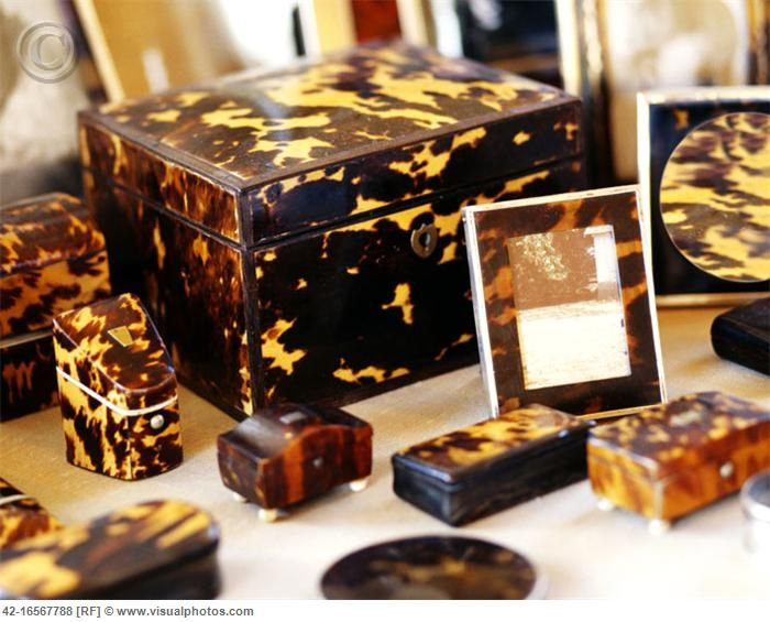 Vintage Tortoise Shell, love, but so many species are endangered.....new, must be faux.