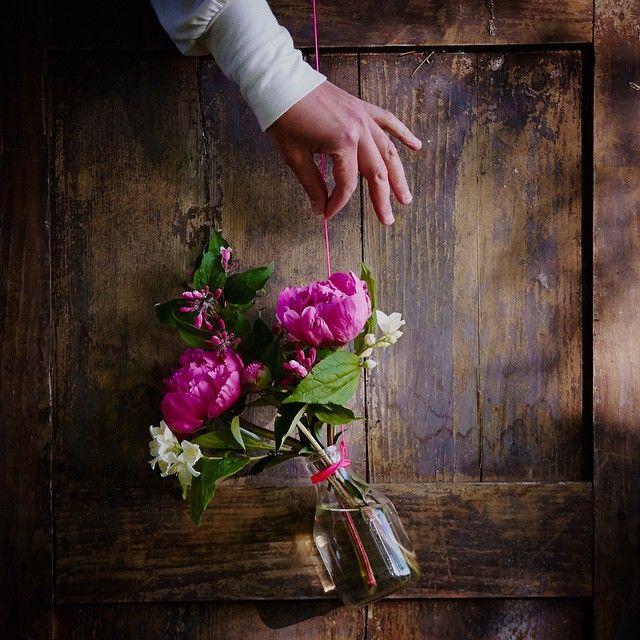 One bouquet per day: weigela, peony, English dogwood, picked in our garden. I wish you could smell these lovelies - heaven! 🌸 Svenska namn: prakttry, pion, doftschersmin. Deutsche Namen: Weigelie, Pfingstrose, Bauernjasmin #onebouquetperday #julianesflowerdiary - @onebouquetperday
