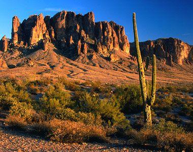 Phoenix, Arizona: Phoenix Az, Places Living, Desert, States Parks, Favorite Places, Phoenix Arizona Parks, Arizona Placesivebeen, Arizona Home, Phoenixarizona
