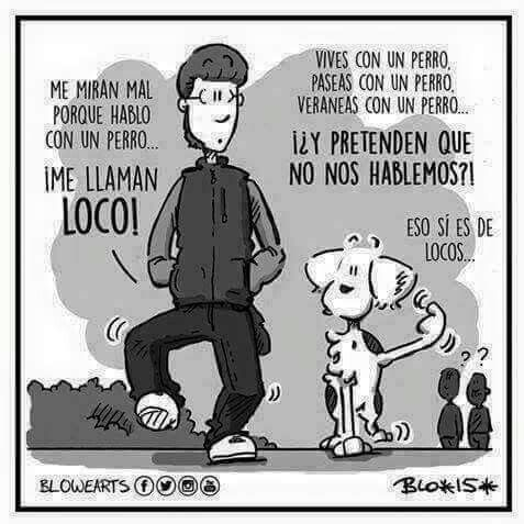Hablar con perros