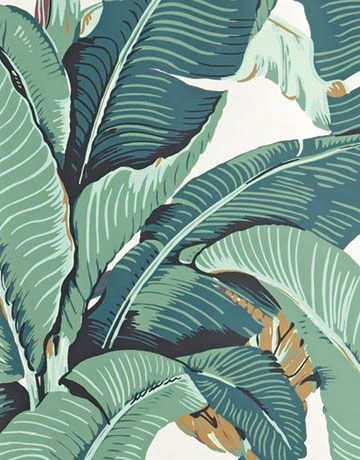 Hinson Wallpaper Best Of Hinson Martinique Wallpaper Palm Leaf Photo