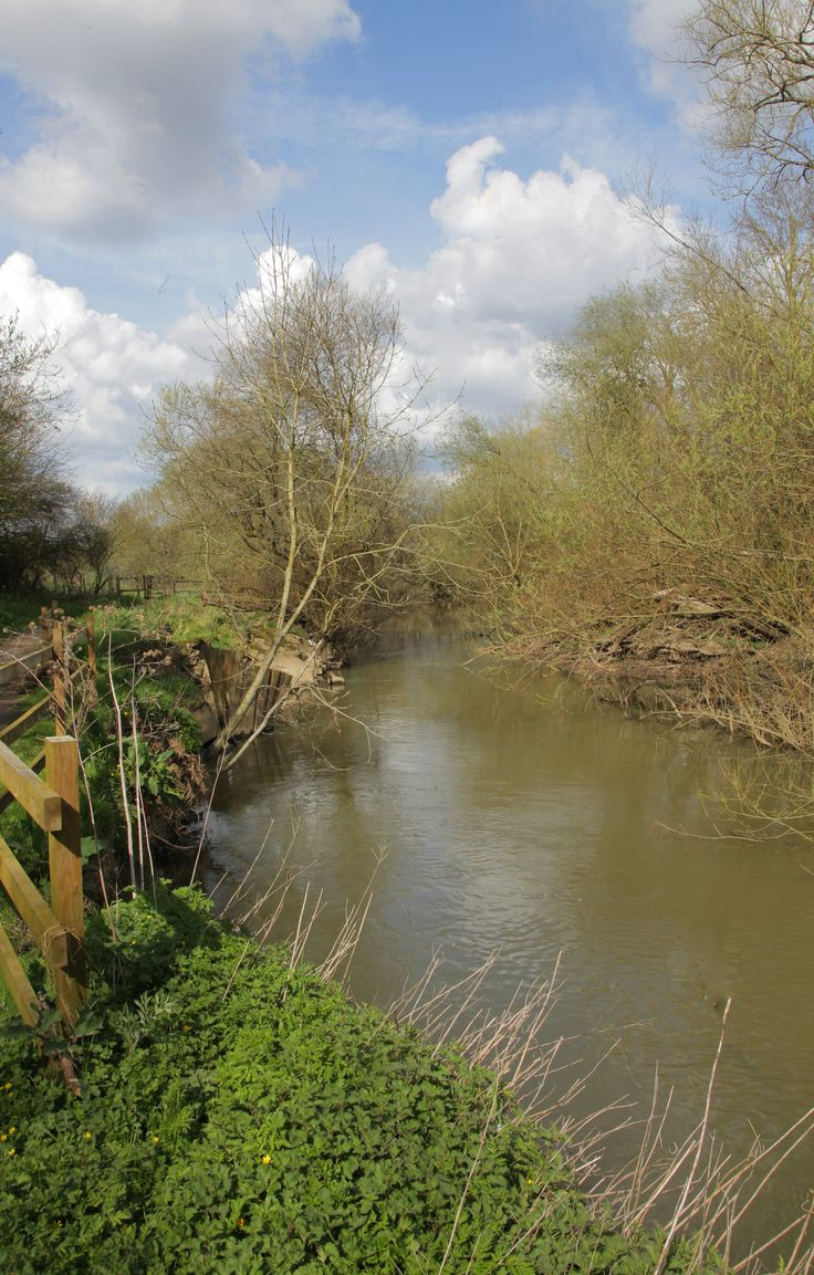 https://flic.kr/p/GNyB2f   River Mole Surrey   www.adamswaine.co.uk The River Mole is a tributary of the River Thames in southern England. It rises in West Sussex near Horsham and flows northwest through Surrey for 80 km (50 mi) to the Thames at East Molesey, opposite Hampton Court Palace.[1] The river gives its name to the Surrey district of Mole Valley. The Mole crosses the North Downs between Dorking and Leatherhead, where it cuts a steep-sided valley, known as the Mole Gap, through the…