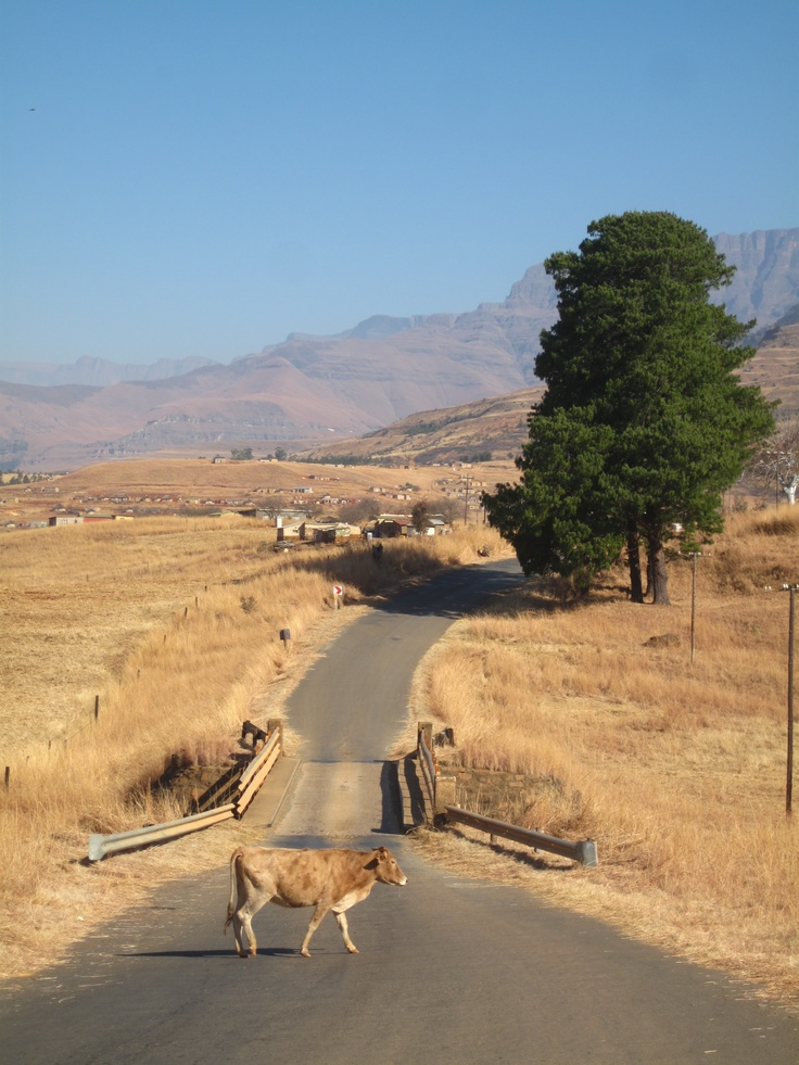 Drakensberg and the Zulu Heartlands, South Africa