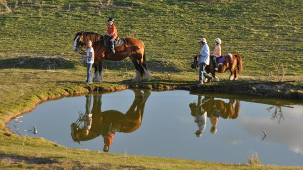 Discover Barcoo's Barn Farmstay on a Tour from Sydney http://toursfromsydney.com/