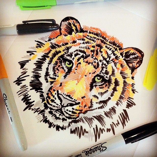 Sharpie art, This is an awesome sharpies tiger head.