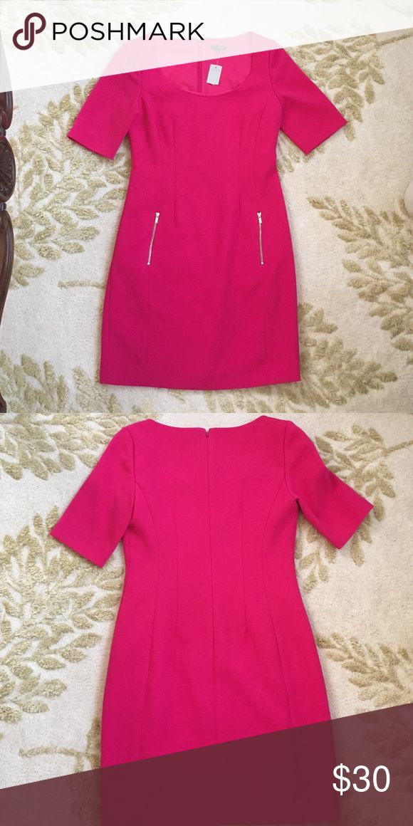 NWT Ann Taylor Hot Pink Work Dress Beautiful and fully lined with light gold zipper accents! Polyester/Rayon/Spandex Ann Taylor Dresses Midi