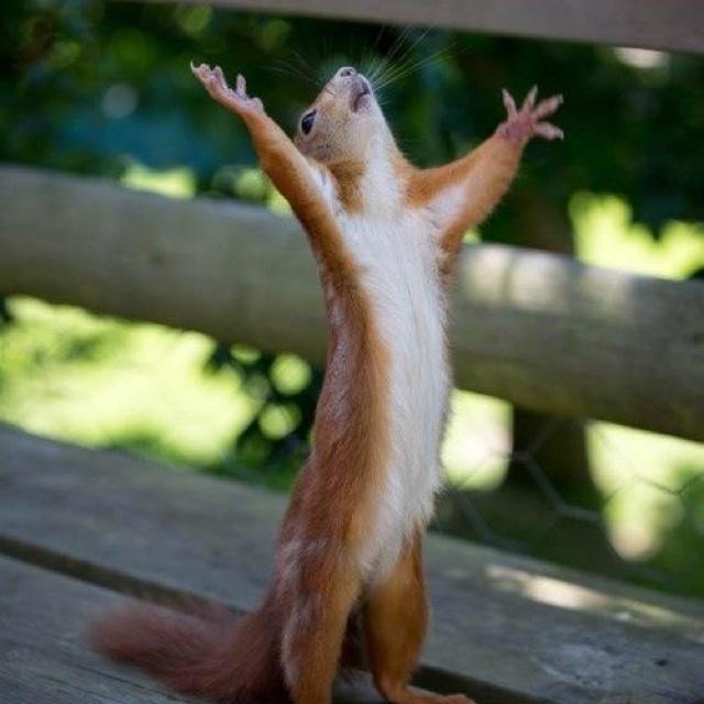 Thank God it's Friday!!!
