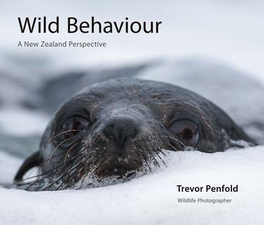 Incub8or++:+Wild+Behaviour+-+a+New+Zealand+Perspective+Book