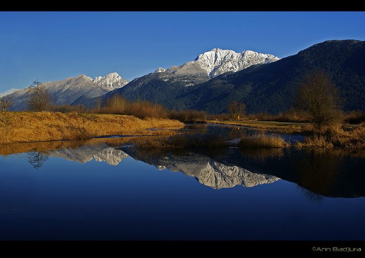 A lovely afternoon at the dikes of Grant Narrows Regional Park in Pitt Meadows near Vancouver, British Columbia, Canada