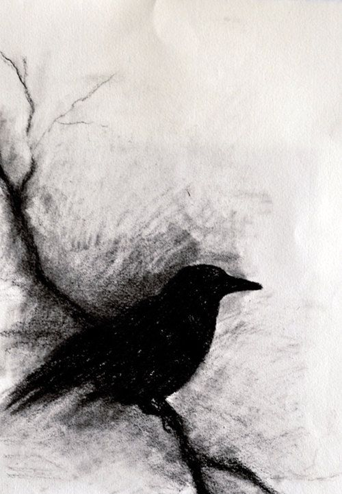 Blackbird on a branch - original charcoal drawing, abstract crow 6x9,5 inch
