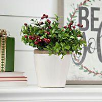 Tea Olive and Berry Arrangement