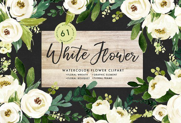 18$ Watercolor White Flower Clip Art by Graphic Box on @creativemarket 61 PNG(300dpi) hand drawn watercolor graphic elements,Each element on an individual png with transparent background.flower elements