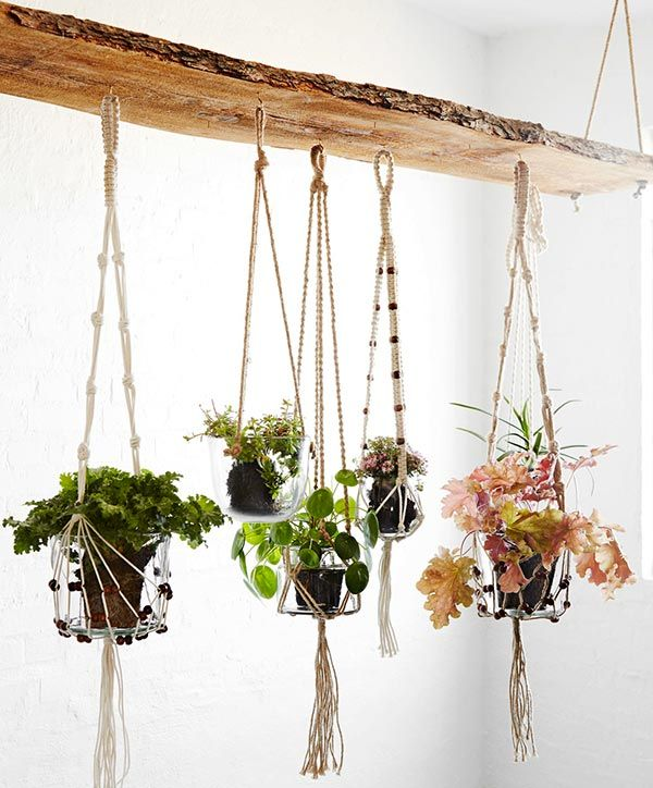 Prancha de madeira para segurar os suportes de vaso