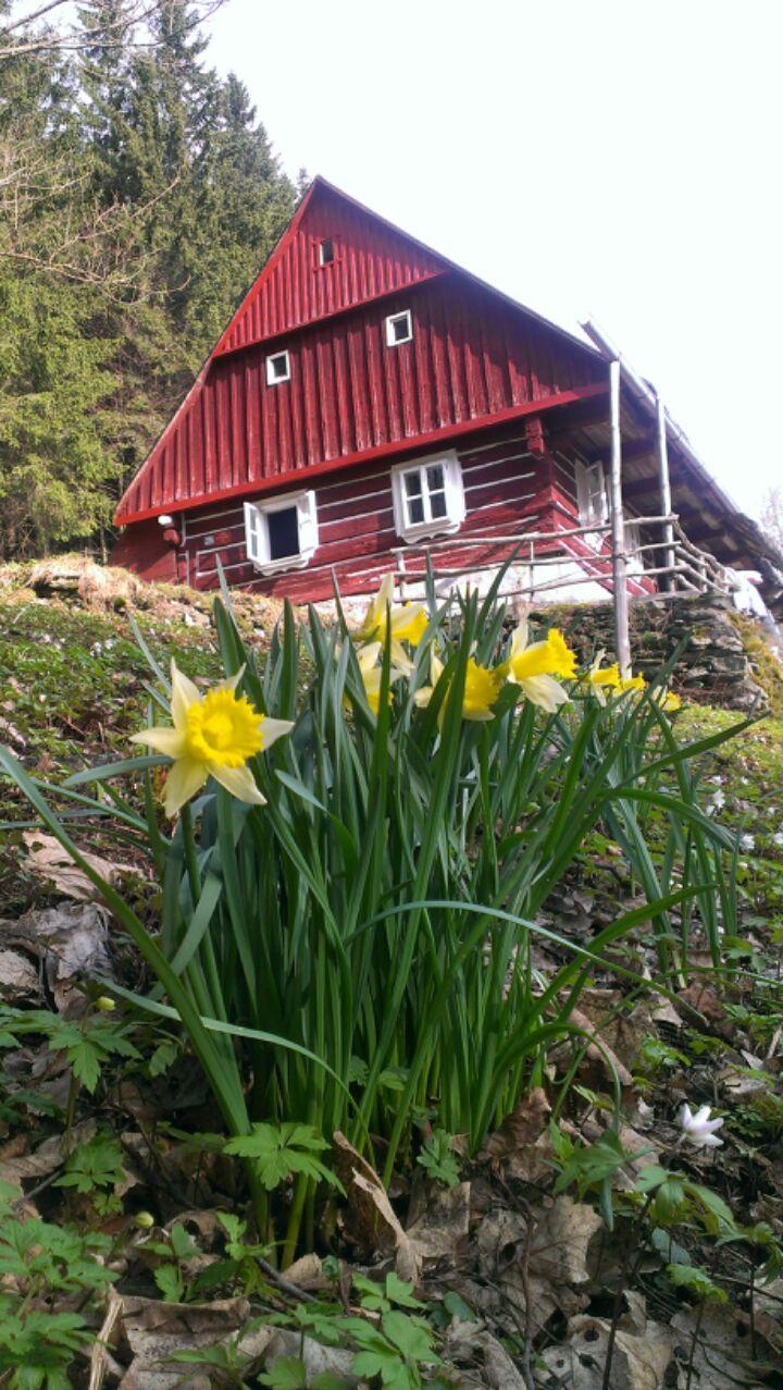 April in Krkonoše