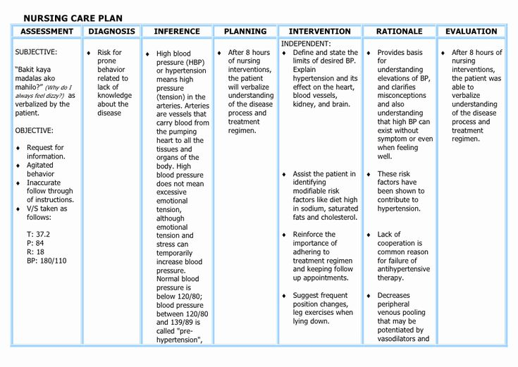 Nursing Care Plans Template Awesome Understanding the ...