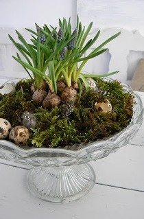 Use dishes from Nearly Nu for luncheon centerpieces.