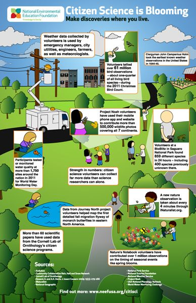 Citizen Science is Blooming- Infographic @Evelyn Spencer Environmental Education Foundation
