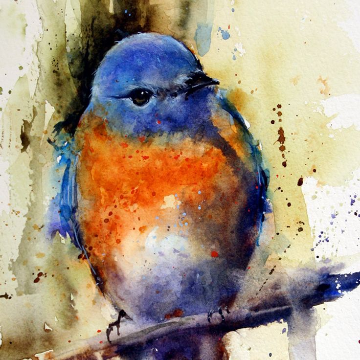 EASTERN BLUEBIRD Watercolor Print By Dean Crouser  via Etsy.