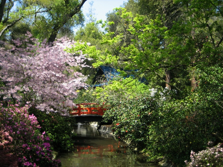 9 Best Descanso Gardens Images On Pinterest Canada Botanical Gardens And Japanese Gardens