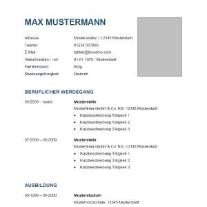Resume Templates For Wordpad 8 Best Lebenslauf Für Lina Images On Pinterest  Cv Resume Sample