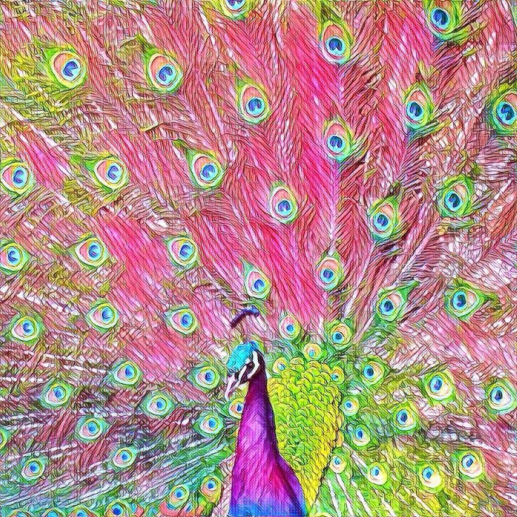 I caught this peacock strutting his stuff for the laydeez at the High Park zoo and have played with the image in various ways since. The black and white print is one of my most popular blocks but I think I'm going to have to add some colour ones - this psychedelic version is too fun not to use.  #peacock #psychedelic #zoo #toronto #pink #blue #bird #birds #torontophotography #torontophotographer #torontolife #igerstoronto #ig_daily #igersworldwide #ig_photooftheday #igaddicts…